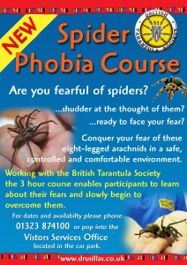 Spider Phobia Course