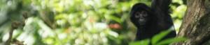 cropped-DSC00794.jpg