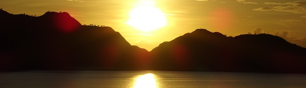 The Naturally Wild Company
